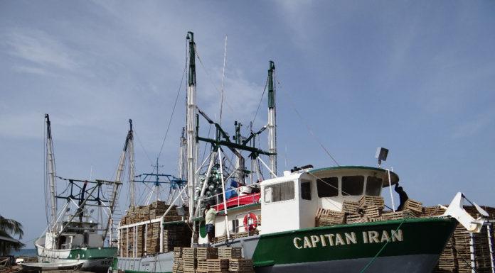 listas embarbaciones